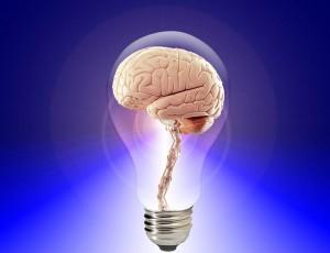 https://pixabay.com/en/brain-think-human-idea-20424/