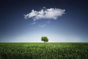 https://pixabay.com/en/tree-natur-nightsky-cloud-stars-736887/