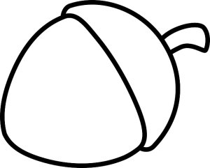 https://pixabay.com/en/acorn-nut-nature-seed-150258/