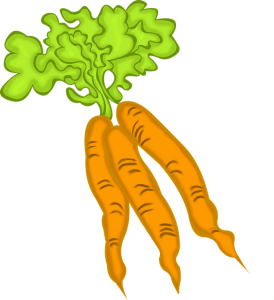 https://pixabay.com/en/carrots-vegetable-vegetarian-food-768236/