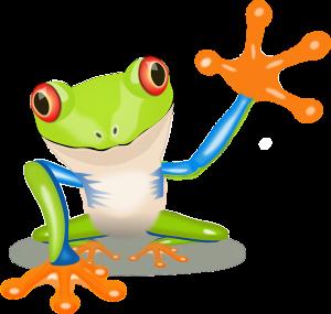 https://pixabay.com/en/frog-tree-frog-amphibian-152633/