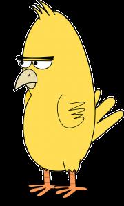 https://pixabay.com/en/bird-angry-animal-angry-bird-mad-159984/