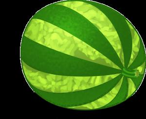 https://pixabay.com/en/melon-fruit-watermelon-green-ripe-160240/