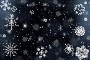 https://pixabay.com/en/snowflake-snow-snowing-winter-cold-554635/