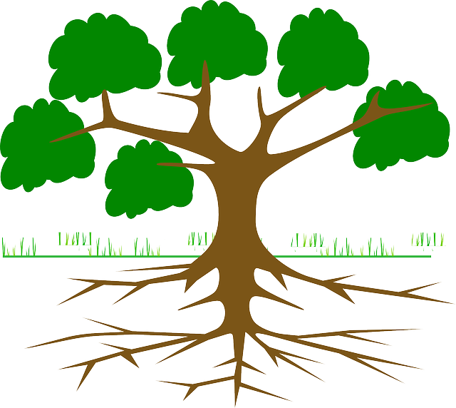 https://pixabay.com/en/tree-branches-root-eco-ecology-309046/