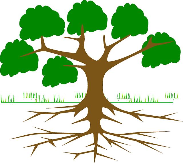 https://pixabay.com/en/tree-branches-root-eco-ecology-309046/