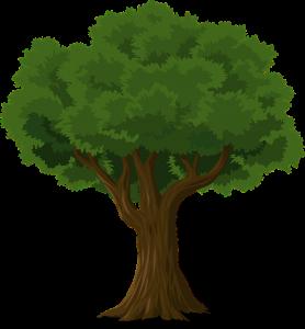 tree-576847_640