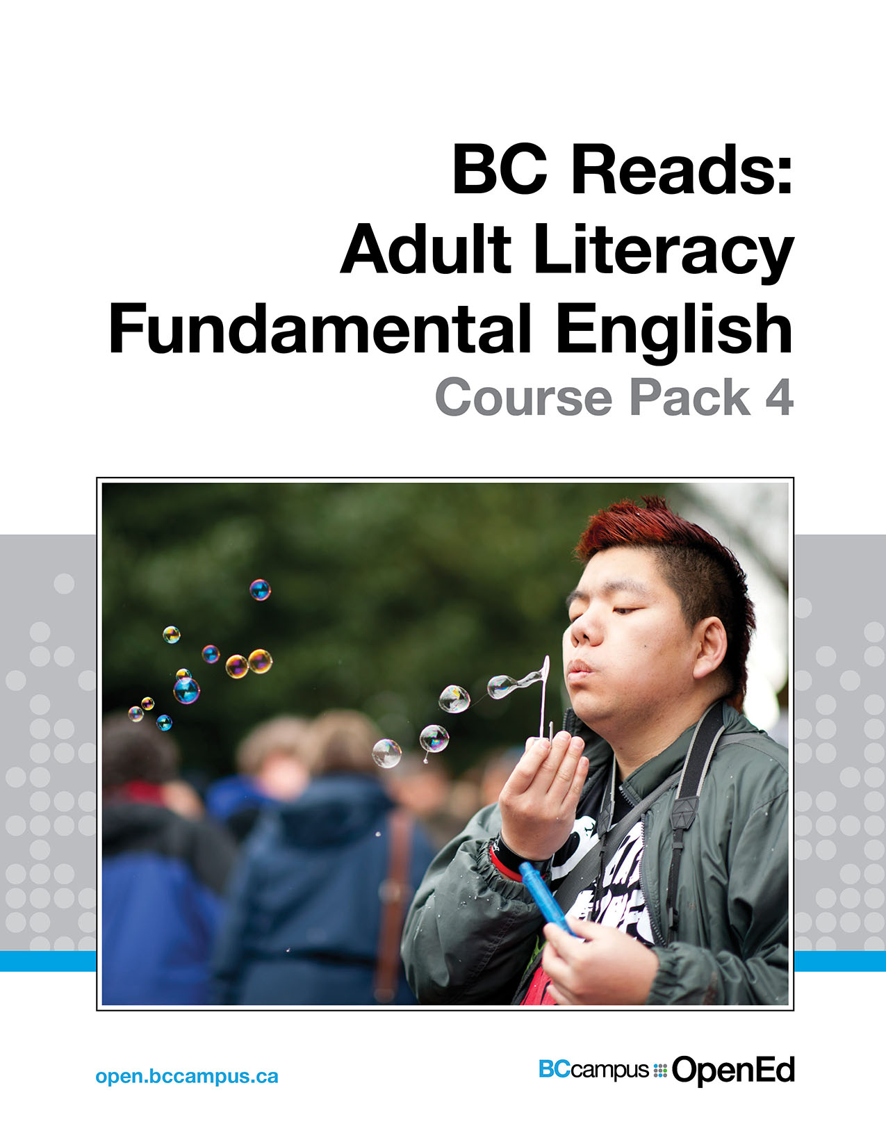 Cover image for BC Reads: Adult Literacy Fundamental English - Course Pack 4