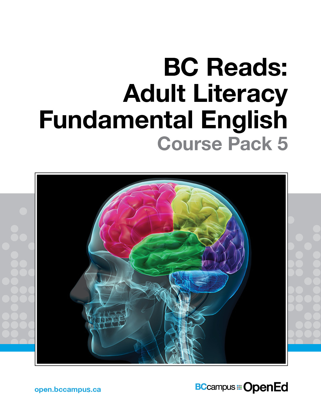 Cover image for BC Reads: Adult Literacy Fundamental English - Course Pack 5