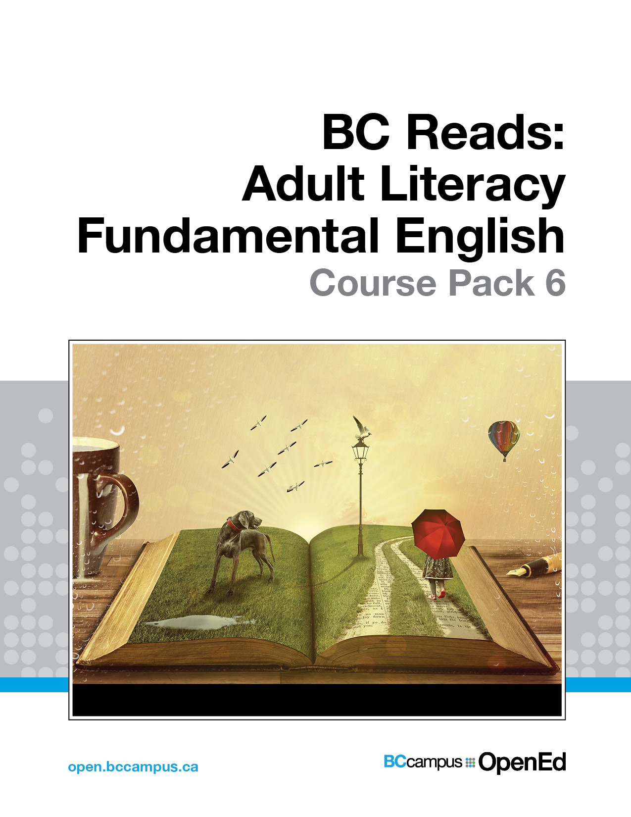 Cover image for BC Reads: Adult Literacy Fundamental English - Course Pack 6