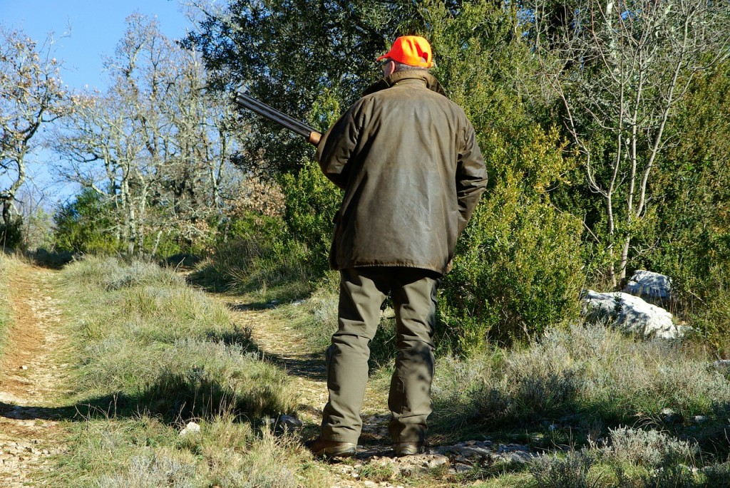 A man stands in a clearing in the woods wearing an orange hat and carrying a rifle.