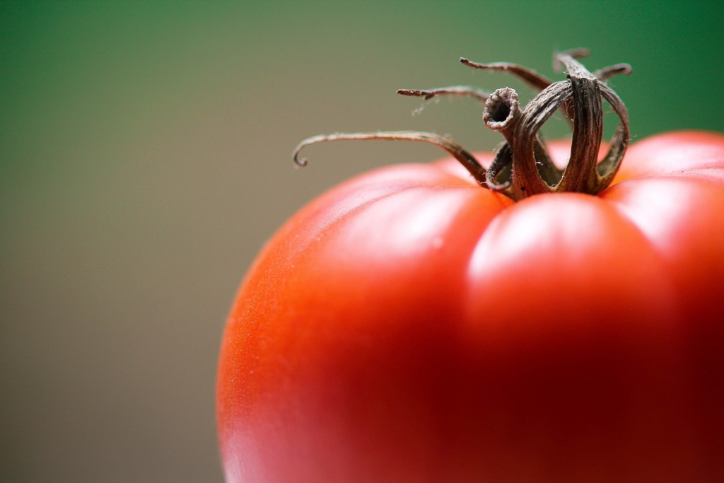 Close-up of a ripe, red tomato.