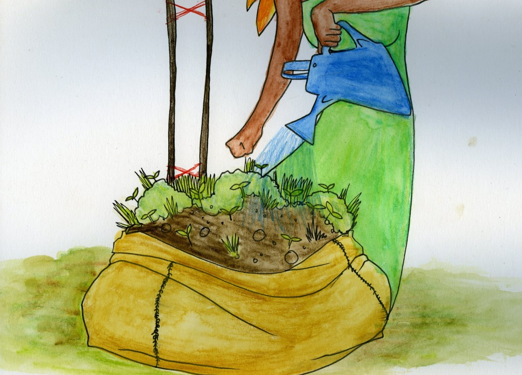 A woman waters a garden growing in a sack.