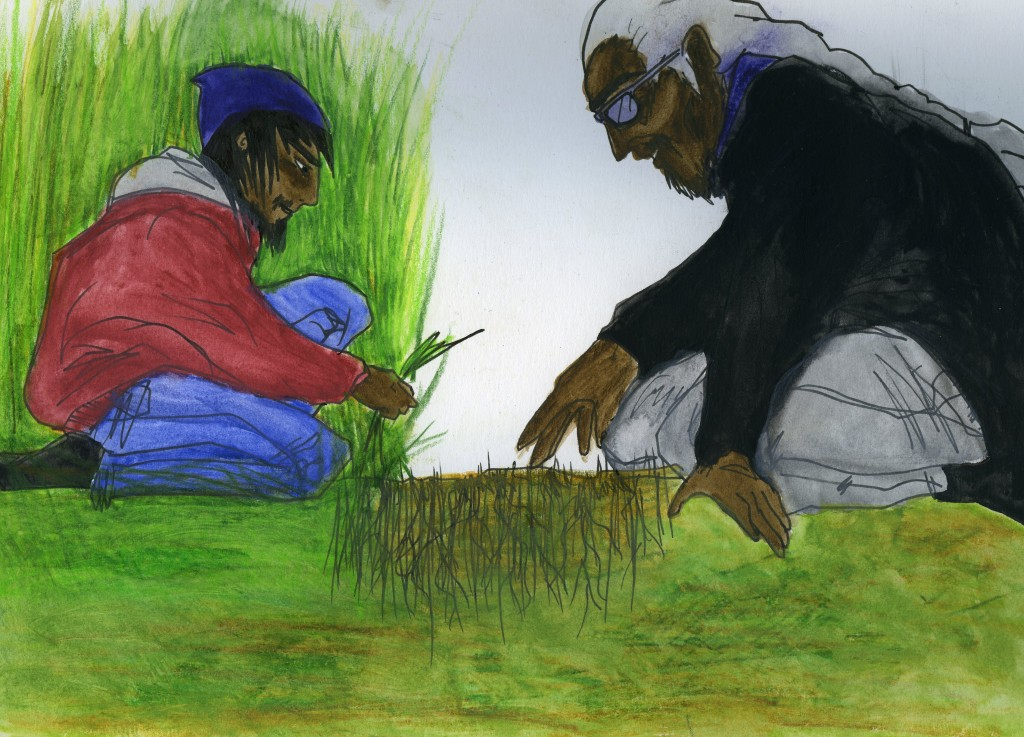 A teenager and man pick tall grass, leaving the roots in the earth.