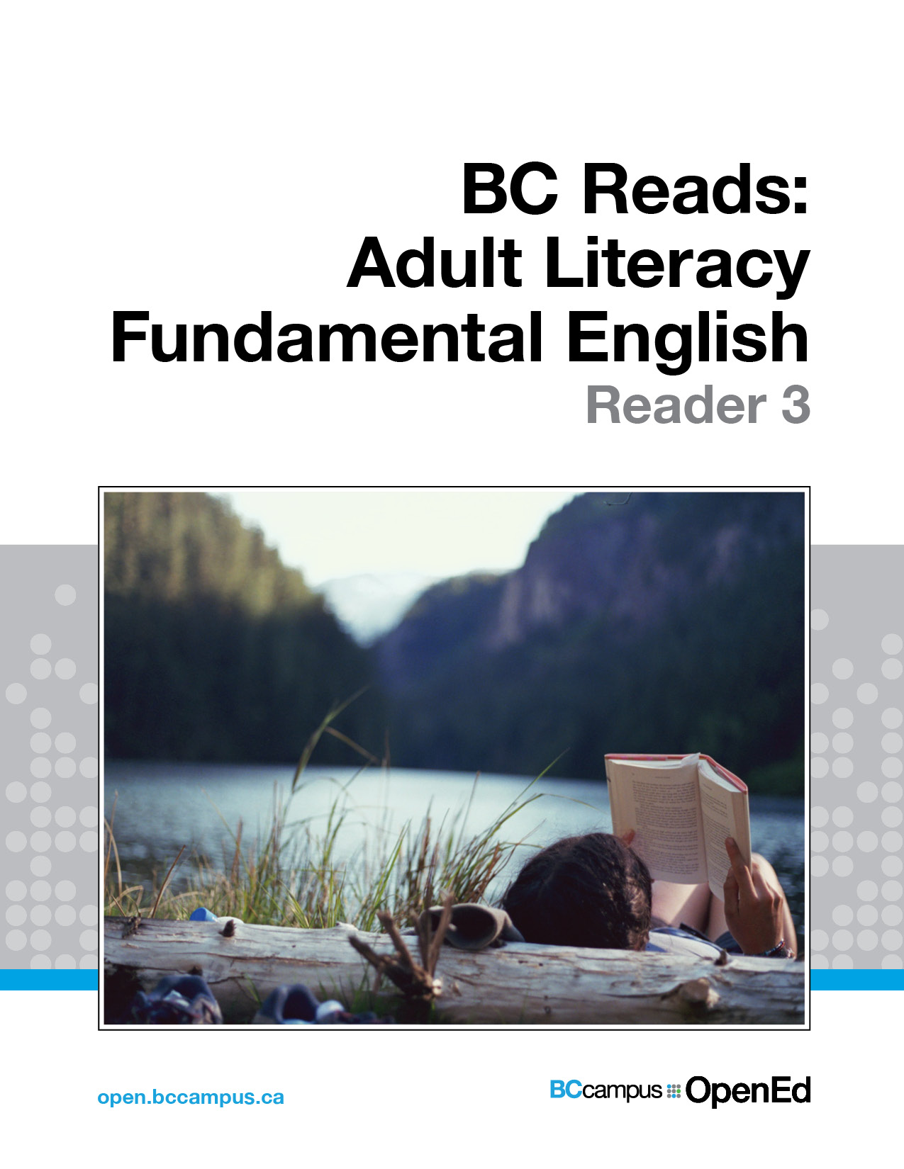 Cover image for BC Reads: Adult Literacy Fundamental English - Reader 3