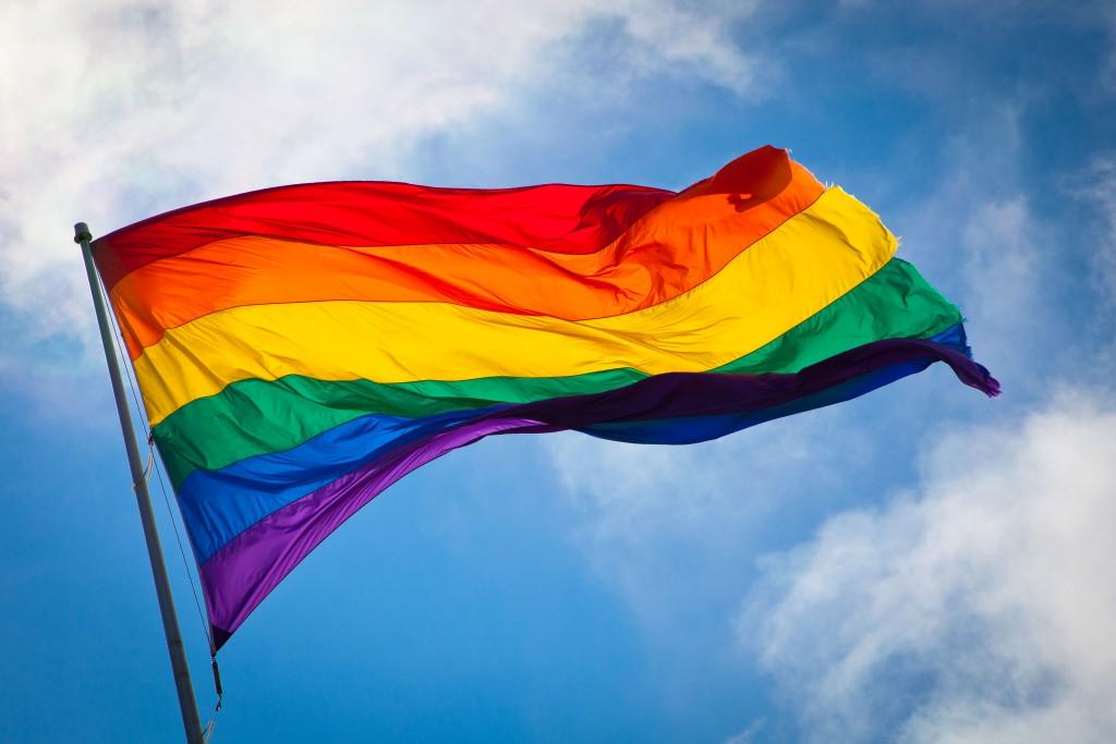 http://upload.wikimedia.org/wikipedia/commons/f/fb/Rainbow_flag_breeze.jpg