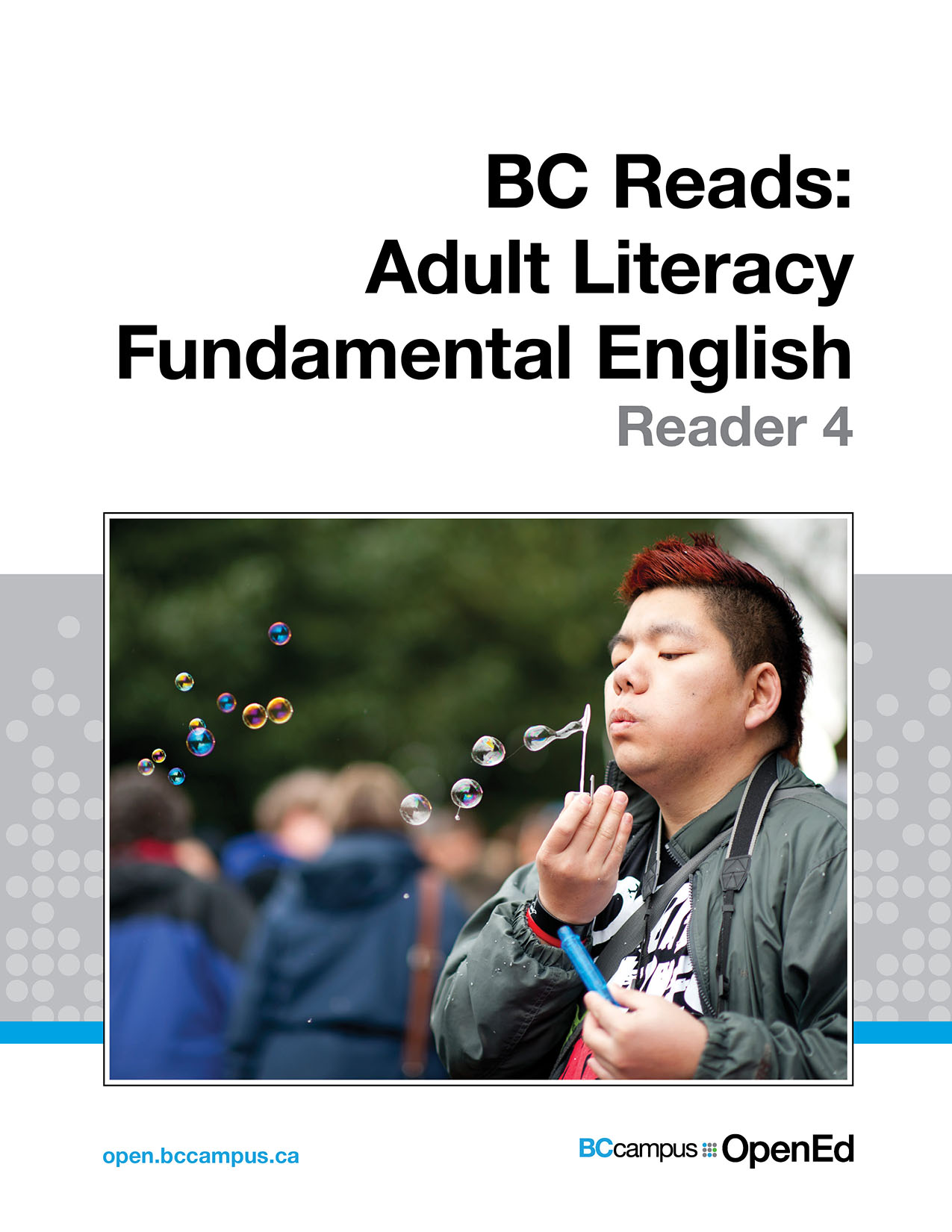 Cover image for BC Reads: Adult Literacy Fundamental English - Reader 4