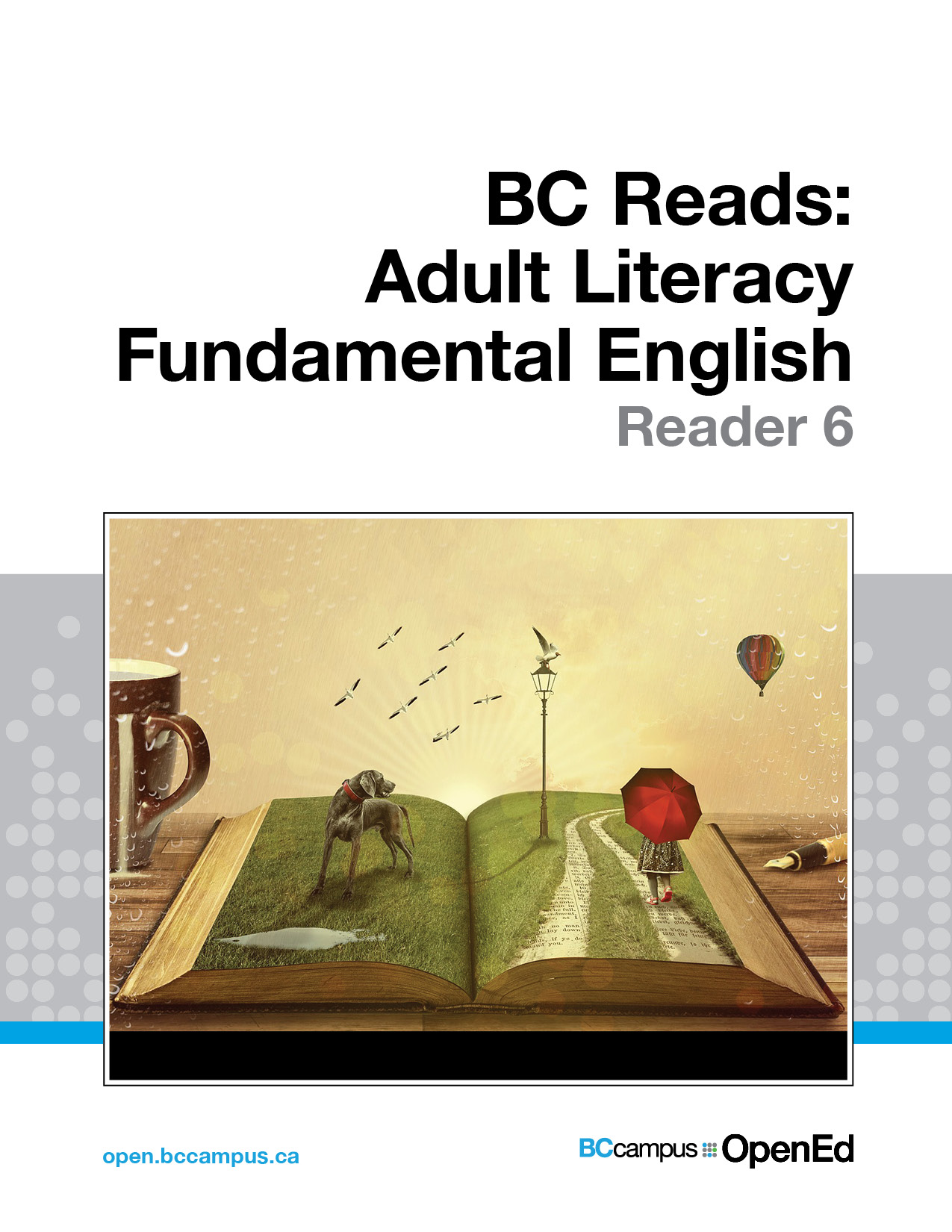 Cover image for BC Reads: Adult Literacy Fundamental English - Reader 6