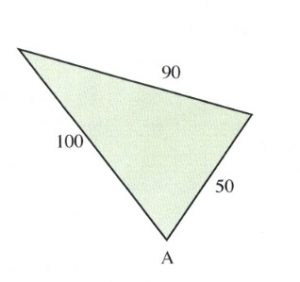 Triangle with 100, 90 and 50 sides.