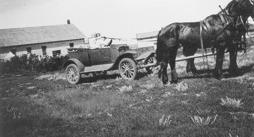 Two people sitting in a car hold the reins to a horse hitched to the vehicle.