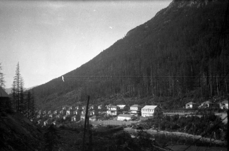Rows of small houses beside a tall forest on a mountainside.