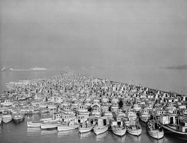 Hundreds of fishing boats are bunched together in a harbour.