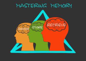 Mastering memory involves encoding, storing, and retrieving information
