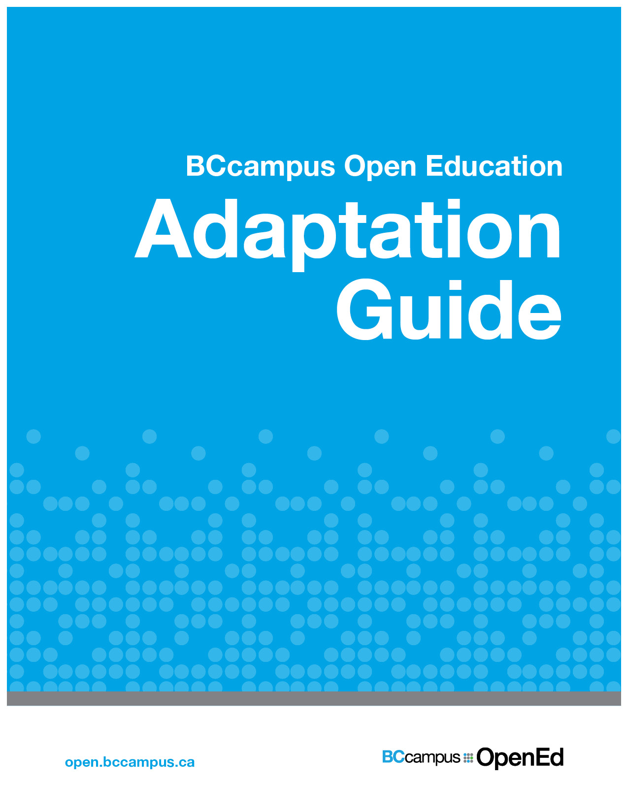 Cover image for Adaptation Guide