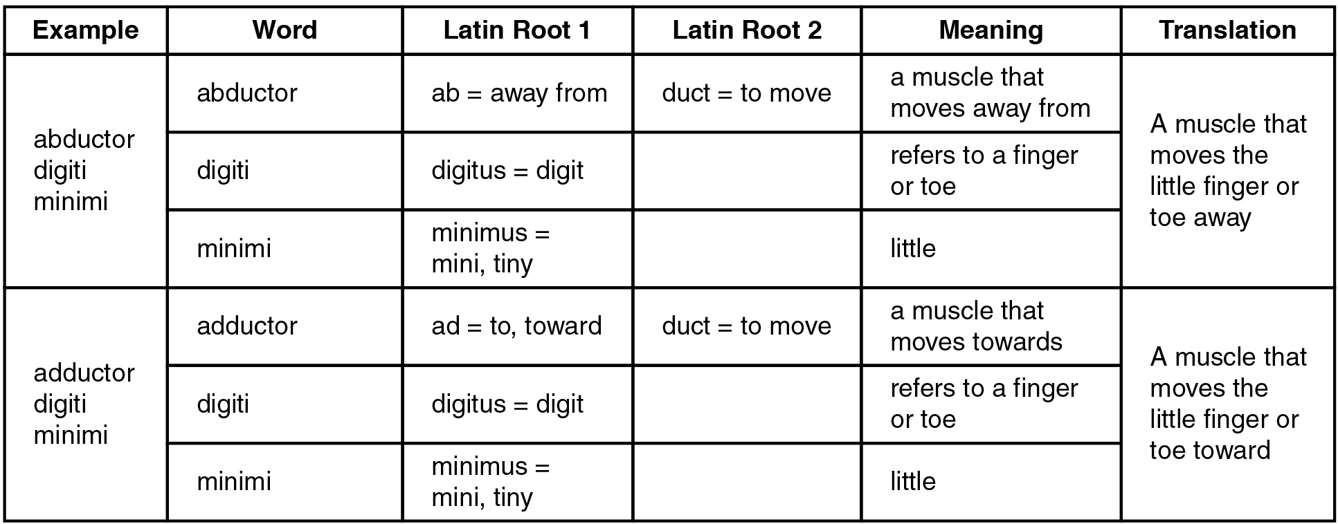 Greek And Latin Names 43