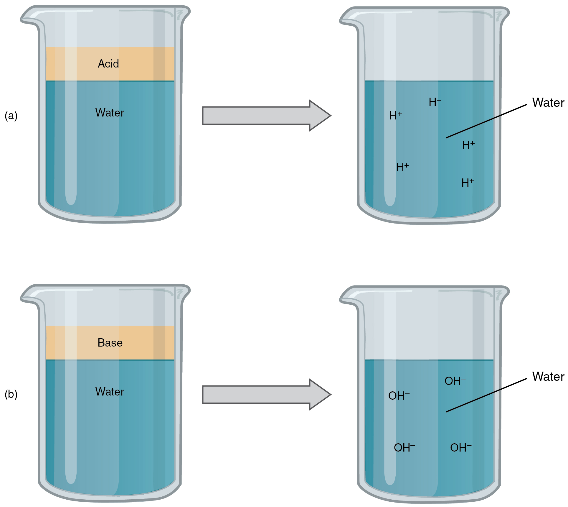 This figure shows four beakers containing different liquids.