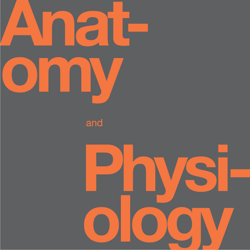 Textbook that says Anatomy and Physiology in orange text and a gray background