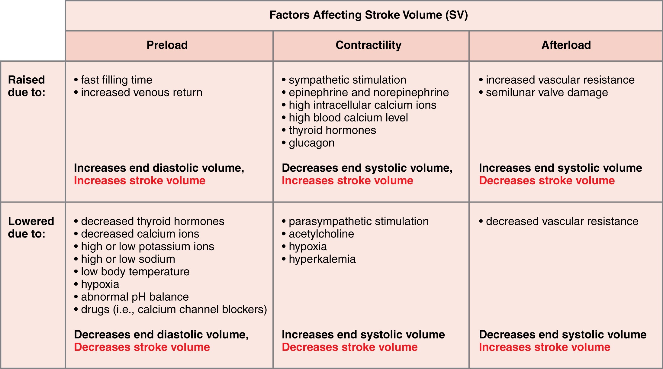 This table describes major factors influencing stroke volume. Preload may be raised due to fast filling time or increased venous return. These factors increase end diastolic volume and increase stroke volume. Preload may be lowered due to decreased thyroid hormones, decreased calcium ions, high or low potassium ions, high or low sodium, low body temperature, hypoxia, abnormal pH balance, or drugs (for example, calcium channel blockers). These factors decrease end diastolic volume and decrease stroke volume. Contractility may be raised due to sympathetic stimulation, epinephrine and norepinephrine, high intracellular calcium ions, high blood calcium level, thyroid hormones, or glucagon. These factors decrease end systolic volume and increase stroke volume. Contractility may be lowered due to parasympathetic stimulation, acetylcholine, hypoxia, or hyperkalemia. These factors increase end systolic volume and decrease stroke volume. Afterload may be raised due to increased vascular resistance or semilunar valve damage. These factors increase end systolic volume and decrease stroke volume. Afterload may be lowered due to decreased vascular resistance. This factor decreases end systolic volume and increases stroke volume.