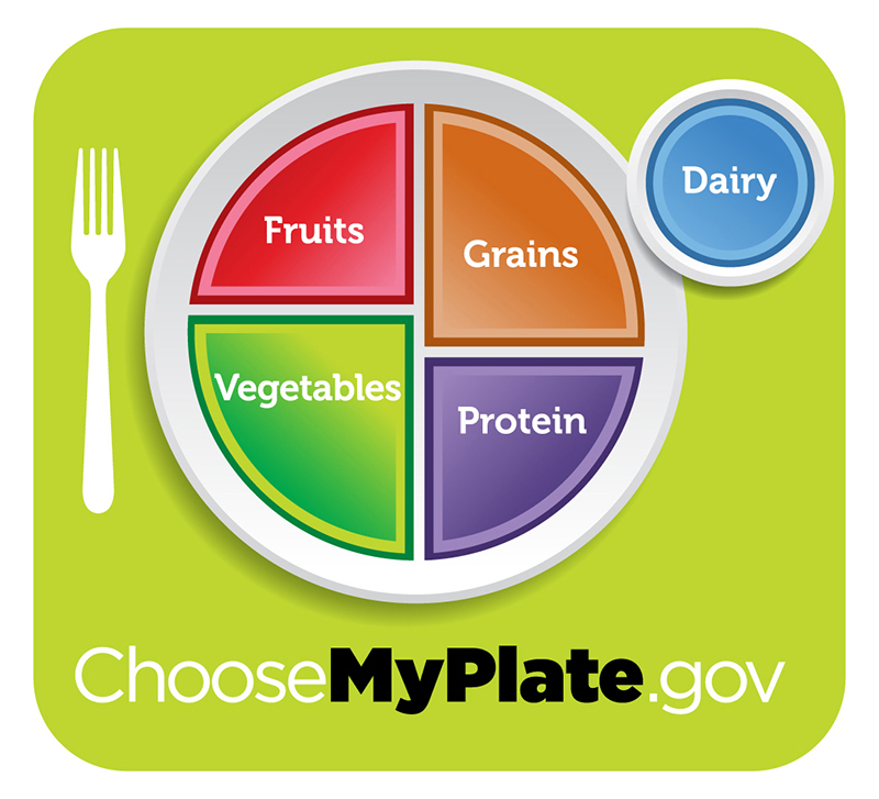 Figure 34.14.  For humans, a balanced diet includes fruits, vegetables, grains, and protein. (credit: USDA)