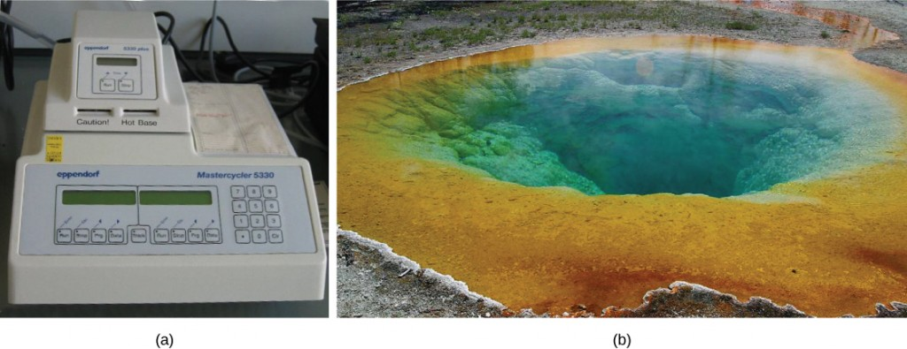 """In part A, a PCR machine sits on a desk. It has a digital screen on the front and buttons, and """"caution, hot base"""" is written on the front. Part B shows a hot spring in Yellowstone."""