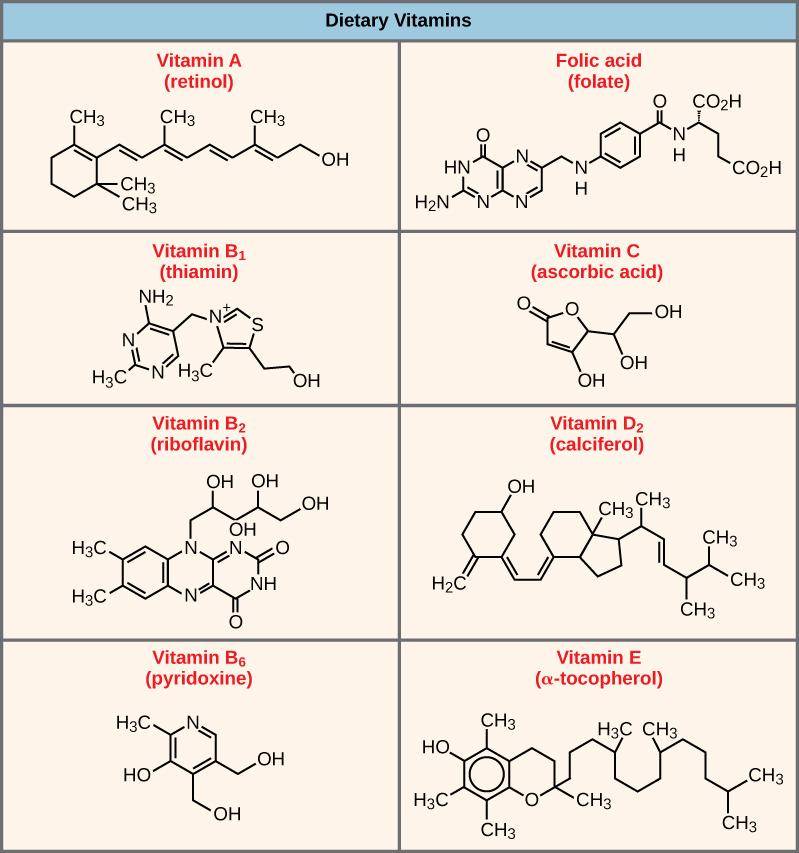 Shown are the molecular structures for Vitamin A, folic acid, Vitamin B1, Vitamin C, Vitamin B2, Vitamin D2, Vitamin B6, and Vitamin E.