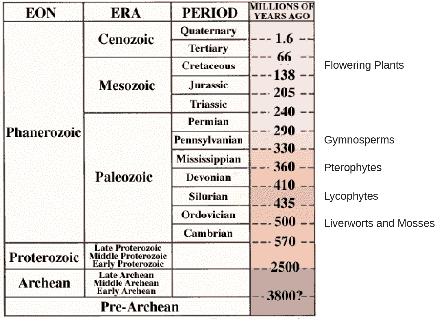 Part A is a table showing a timeline of geological eras.  The columns of the table read, from left to right, Eon, era, period, millions of years ago.  It shows that during the Phanerozoic eon, three eras occured; the Cenozoic, mesozoic, and the paleozoic.  The cenozoic era contained the quaternary period, which occured 1.6 million years ago, and the tertiary period, which occured 66 million years ago.  The mesozoic era contained the cretaceous period, occuring between 66 and 138 million years ago.  Flowering plants evolved during this period.  The Jurrasic period occured between 138 and 205 million years ago, and the triassic period occured between 205 and 240 million years ago.  The Paleozoic era contained many periods. The permian period occured between 240 and 290 years ago.  The Pennsylvanian period occured 290 to 330 million years ago, and gymnosperms evolved then.  The Mississippian period occured 330 to 360 million years ago.  Pterophytes evolved around 360 million years ago.  The Devonian period occured 360 to 410 million years ago.  The silurian period occured 410 to 435 million years ago, in which lycophytes evolved.  The ordovician period occured 435 to 500 million years ago; in which liverworts and mosses evolved.  The cambrian period occured 500 to 570 million years ago.  During the Proterozoic eon, there were three eras, the late, middle, and early proterozoic eras.  These occured between 570 and 2500 million years ago.  In the archean eon, three eras occured; late, middle, and early archean eras.  These occured from 2500 to 3800 million years ago.  Pre archean is shown as a single eon, era, and period, occuring more than 3800 million years ago.