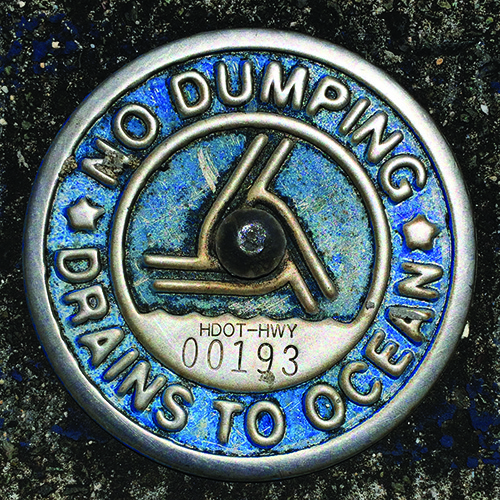 """A sign that reads """"No Dumping, Drains to Ocean""""."""