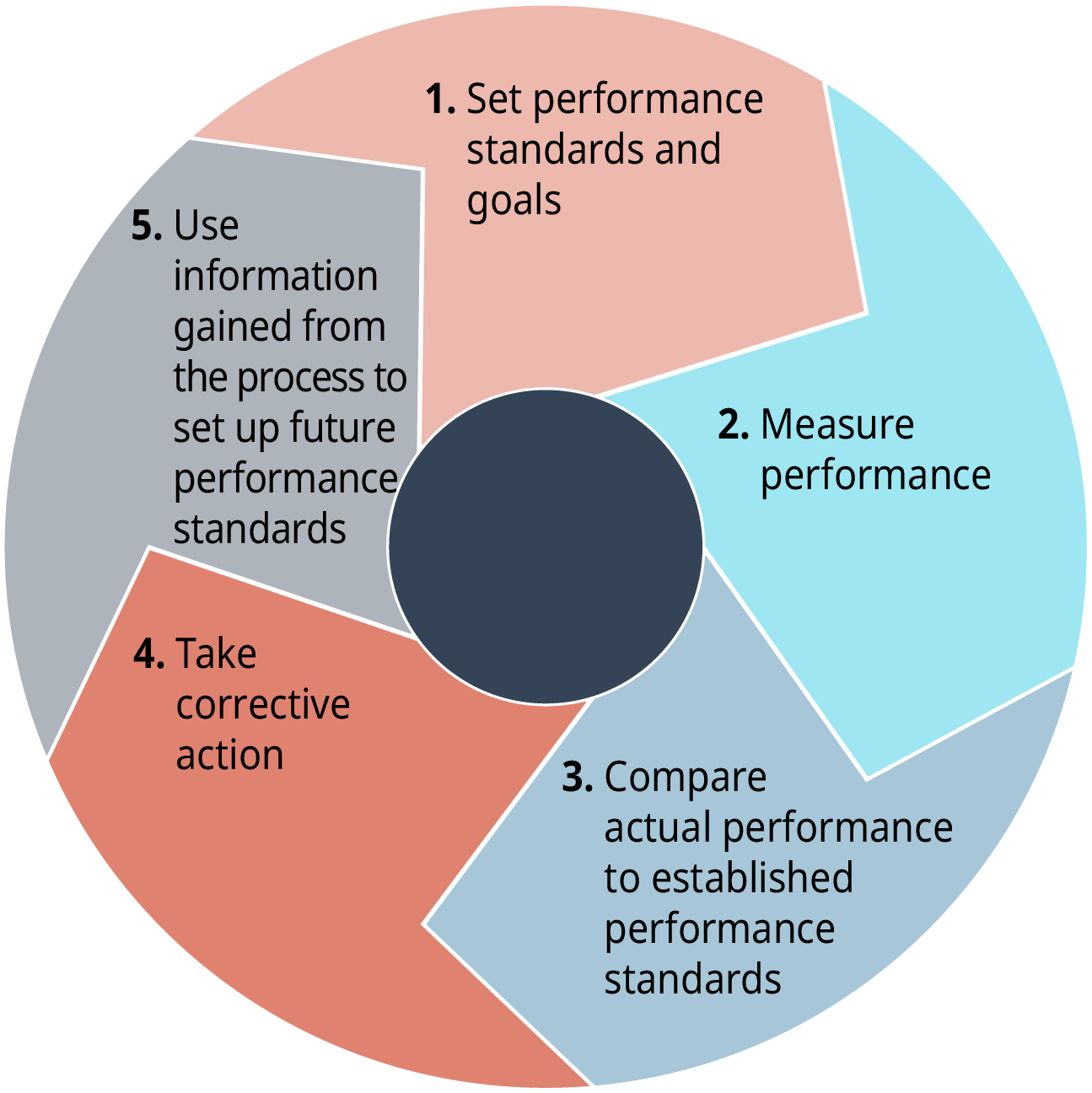Each stage flows into the next. Stage 1 says, set performance standards and goals. Stage 2 says, measure performance. Stage 3 says, compare actual performance to established performance standards. Stage 4 says, take corrective action. Stage 5 says, use information gained from the process to set up future performance standards.