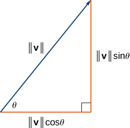 """This figure is a right triangle. There is an angle labeled theta. The two sides are labeled """"magnitude of v times cosine theta"""" and """"magnitude of v times sine theta."""" The hypotenuse is labeled """"magnitude of v."""""""