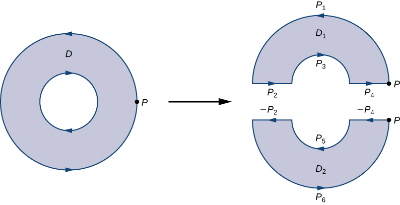 A diagram of an annulus – a circular region with a hole in in like a donut. Its boundary is oriented counterclockwise. One point P on the outer boundary is labeled. It is the right endpoint of the horizontal diameter. The annulus is split horizontally down the middle into two separate regions that are each simply connected. Point P is labeled on both of these regions, D1 and D2. Each region has boundaries oriented counterclockwise. The upper curve of D1 is labeled P1, the left flat side is P2, the lower curve is P3, and the right flat side is P4. The lower curve of D2 is P6, the left flat side is –P2, the upper curve is P5, and the right flat side is –P4.
