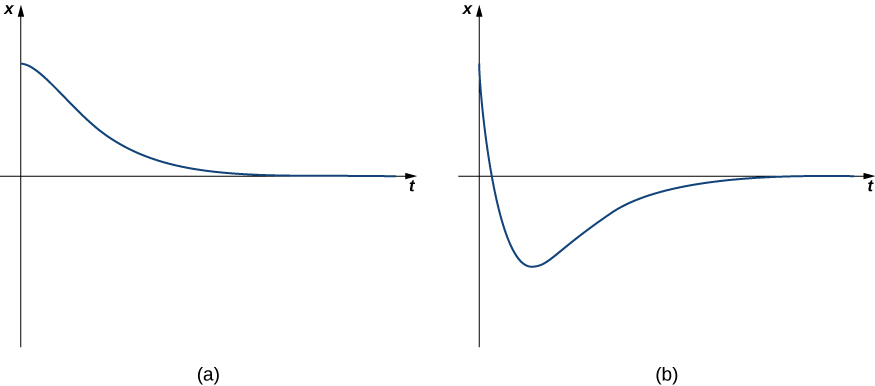 This figure has two graphs labeled (a) and (b). The first graph is in the first quadrant and is a decreasing curve with the horizontal axis as a horizontal asymptote. The second graph initially is a decreasing function but becomes increasing below the horizontal axis. Then, the horizontal axis is also a horizontal asymptote.