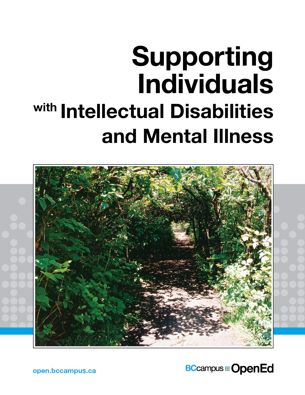 Cover image for Supporting Individuals with Intellectual Disabilities & Mental Illness