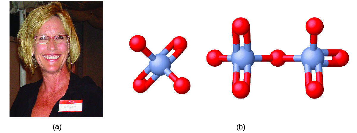 Figure A shows a photo of Erin Brockovich. Figure B shows a 3-D ball-and-stick model of chromate. Chromate has a chromium atom at its center that forms bonds with four oxygen atoms each. Two of the oxygen atoms form single bonds with the chromium atom while the other two form double bonds each. The structure of dichromate consists of two chromate ions that are bonded and share one of their oxygen atoms to which each chromate atom has a single bond.