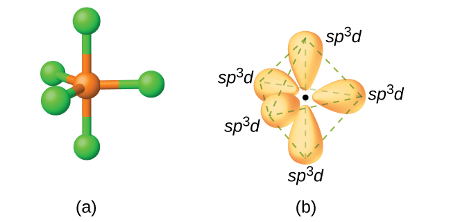 "Two images are shown and labeled ""a"" and ""b."" Image a depicts a ball-and-stick model in a trigonal bipyramidal arrangement. Image b depicts the hybrid orbitals in the same arrangement and each is labeled, ""s p superscript three d."""