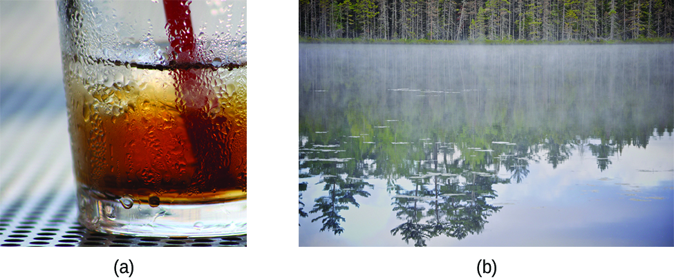 Image a shows a brown colored beverage in a glass with condensation on the outside. Image b shows a body of water with fog hovering above the surface of the water.