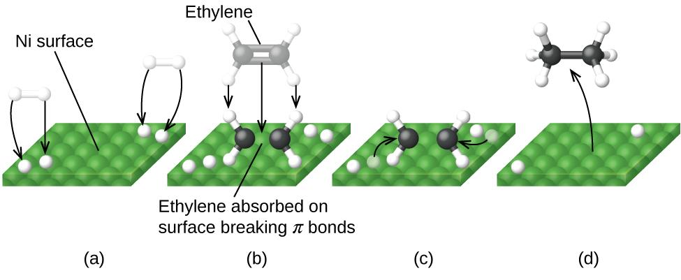 127 Catalysis Chemistry