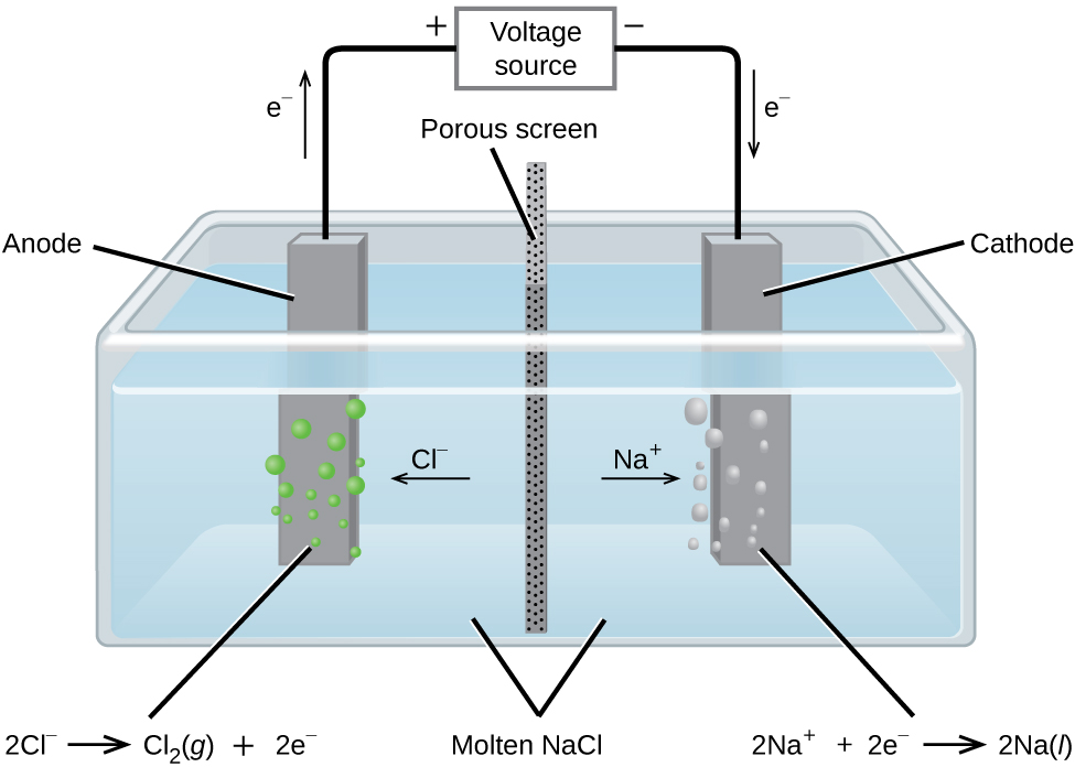 """This diagram shows a tank containing a light blue liquid, labeled """"Molten N a C l."""" A vertical dark grey divider with small, evenly distributed dark dots, labeled """"Porous screen"""" is located at the center of the tank dividing it into two halves. Dark grey bars are positioned at the center of each of the halves of the tank. The bar on the left, which is labeled """"Anode"""" has green bubbles originating from it. The bar on the right which is labeled """"Cathode"""" has light grey bubbles originating from it. An arrow points left from the center of the tank toward the anode, which is labeled """"C l superscript negative."""" An arrow points right from the center of the tank toward the cathode, which is labeled """"N a superscript plus."""" A line extends from the tops of the anode and cathode to a rectangle centrally placed above the tank which is labeled """"Voltage source."""" An arrow extends upward above the anode to the left of the line which is labeled """"e superscript negative."""" A plus symbol is located to the left of the voltage source and a negative sign it located to its right. An arrow points downward along the line segment leading to the cathode. This arrow is labeled """"e superscript negative."""" The left side of below the diagram is the label """"2 C l superscript negative right pointing arrow C l subscript 2 ( g ) plus 2 e superscript negative."""" At the right, below the diagram is the label """"2 N a superscript plus plus 2 e superscript negative right pointing arrow 2 N a ( l )."""""""