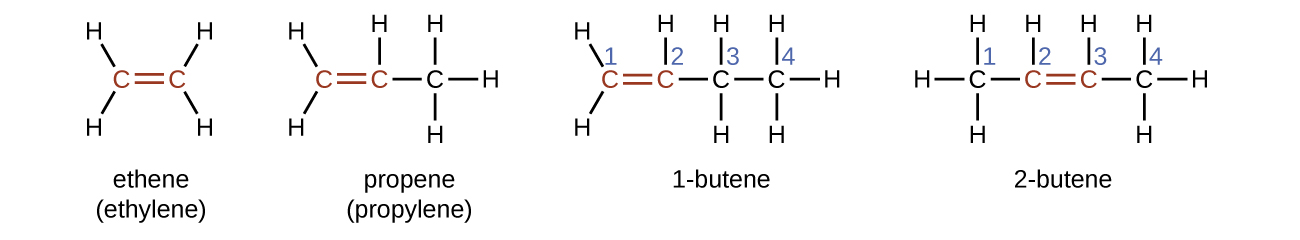 What are five isomers of C4H6?