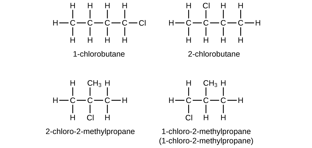 Four structural formulas are provided. The first has a hydrocarbon chain with a length of four C atom. All bonds are single. Nine H atoms are attached and a single C l atom is attached at the far right end of the structure which is labeled 1 dash chlorobutane. The second has a hydrocarbon chain with a length four C atoms. All bonds are single. Nine H atoms are attached and a single C l atom is attached above the second carbon counting left to right. This structure is labeled 2 dash chlorobutane. The third has a hydrocarbon chain with a length of three C atoms. All bonds are single. A single C l atom is bonded beneath the middle C atom and a C H subscript 3 group is also bonded above the middle C atom. Six H atoms are attached, and the structure is labeled 2 dash chloro dash 2 dash methylpropane. The fourth structure has a hydrocarbon chain with a length of three C atoms. All bonds are single. A single C l atom is bonded beneath the first C atom (from left to right) and a C H subscript 3 group is bonded above the middle C atom. Six H atoms are attached, and the structure is labeled 1 dash chloro dash 2 dash methylpropane.