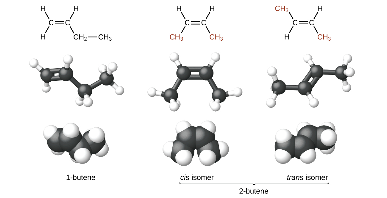The figure illustrates three ways to represent isomers of butene. In the first row of the figure, Lewis structural formulas show carbon and hydrogen element symbols and bonds between the atoms. The first structure in this row shows a C atom with a double bond to another C atom which is bonded down and to the right to C H subscript 2 which, in turn, is bonded to C H subscript 3. The first C atom, moving from left to right, has two H atoms bonded to it and the second C atom has one H atom bonded to it. The second structure in the row shows a C atom with a double bond to another C atom. The first C atom is bonded to an H atom up and to the left and C H subscript 3 down and to the left. The second C atom is bonded to an H atom up and to the right and C H subscript 3 down and to the right. Both C H subscript 3 structures appear in red. The third structure shows a C atom with a double bond to another C atom. The first C atom from the left is bonded up to a the left to C H subscript 3 which appears and red. It is also bonded down and to the left to an H atom. The second C atom is bonded up and to the right to an H atom and down and to the left to C H subscript 3 which appears in red. In the second row, ball-and-stick models for the structures are shown. In these representations, single bonds are represented with sticks, double bonds are represented with two parallel sticks, and elements are represented with balls. C atoms are black and H atoms are white in this image. In the third row, space-filling models are shown. In these models, atoms are enlarged and pushed together, without sticks to represent bonds. In the final row, names are provided. The molecule with the double bond between the first and second carbons is named 1 dash butene. The two molecules with the double bond between the second and third carbon atoms is called 2 dash butene. The first model, which has both C H subscript 3 groups beneath the double bond is called the cis isomer. The second which has the C H subscript 3 groups on opposite sides of the double bond is named the trans isomer.